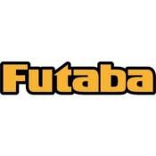 Futaba (14)